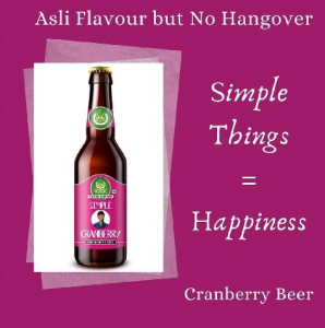 1 Yogic Cranberry Non-Alcoholic Beer